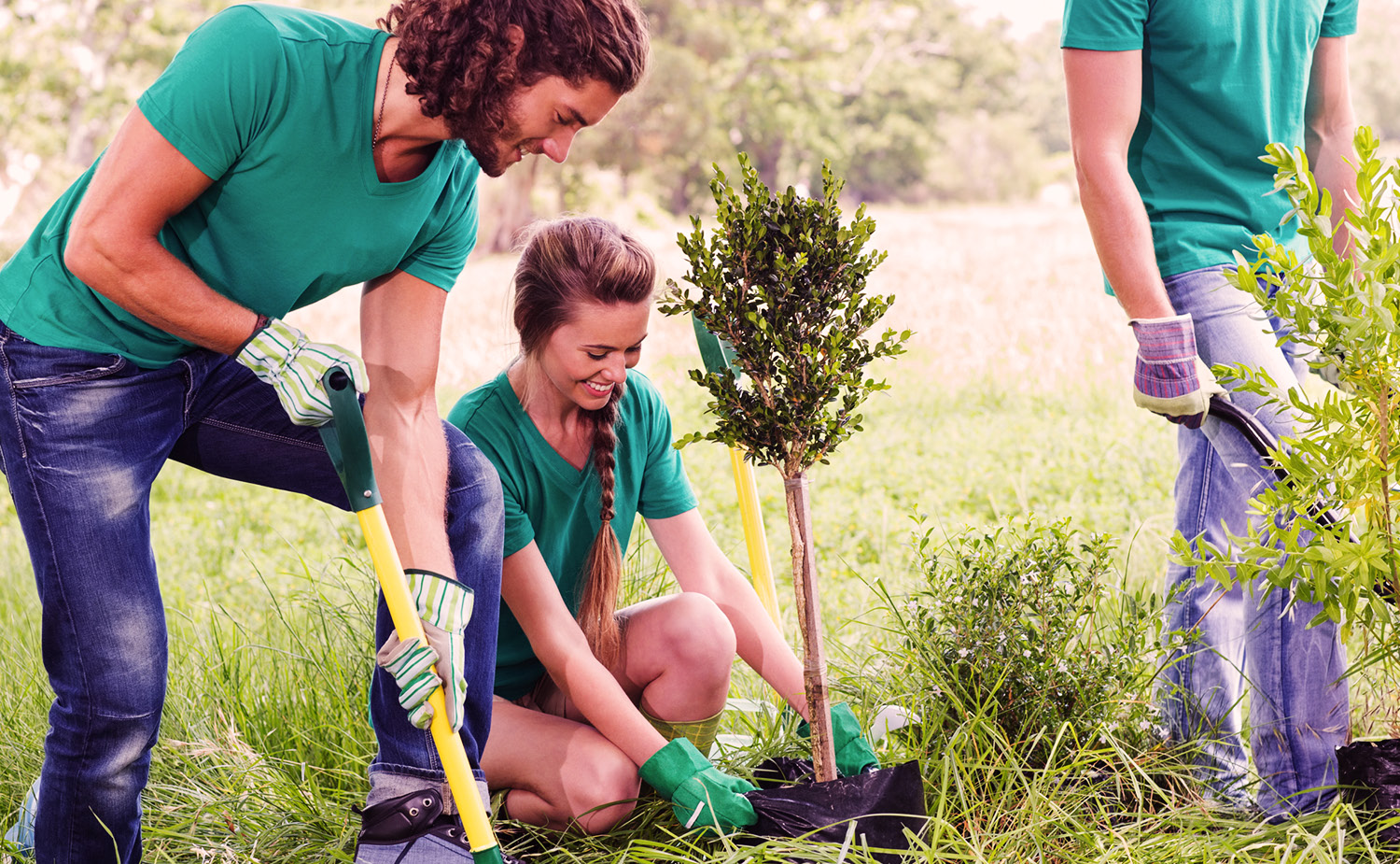 Engaged employees planting a tree for a service project