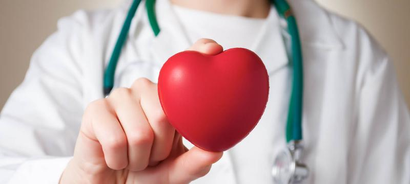 Healthcare professional holding up a heart