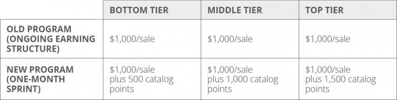 Incentive program structure example