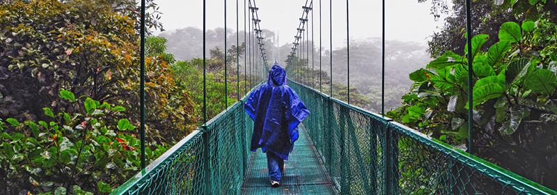 Person crossing a bridge wearing a blue rain poncho in a rainforest in Costa Rica